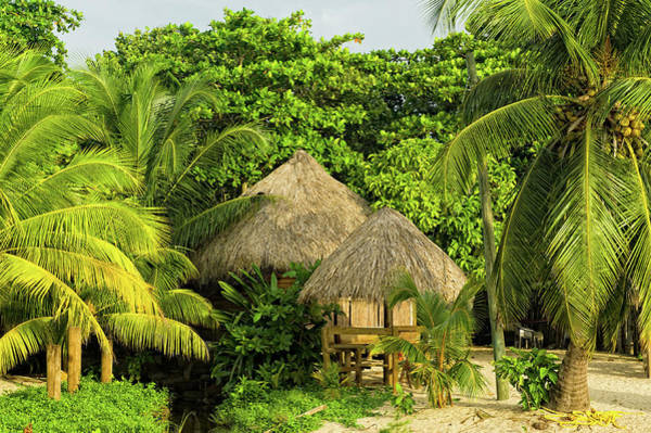 Photo Shoot Photograph - Tropical Huts Shelter In Jungle by Adventure photo