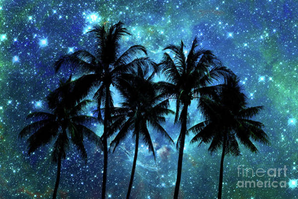 Vacation Time Photograph - Tropical Night by Delphimages Photo Creations