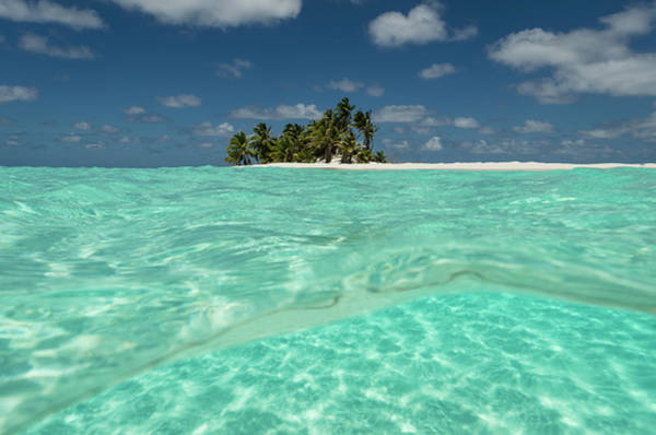 Atoll Photograph - Tropical Palm-covered Island And Atoll by Pete Atkinson