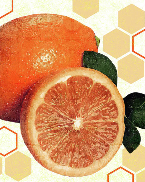 Tropical Print - Orange, Grapefruit, Tangerine - Modern Wall Art Print - Tropical Poster Art Print