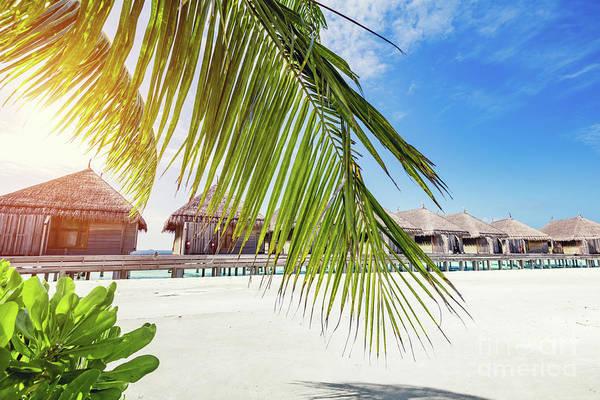 Photograph - Tropical Resort On Maldives Island. by Michal Bednarek