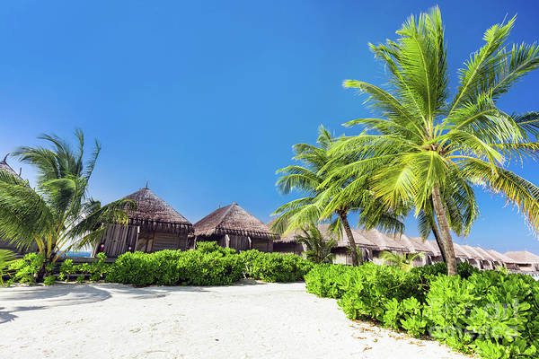 Wall Art - Photograph - Tropical Resort On The Beach On Maldives. by Michal Bednarek