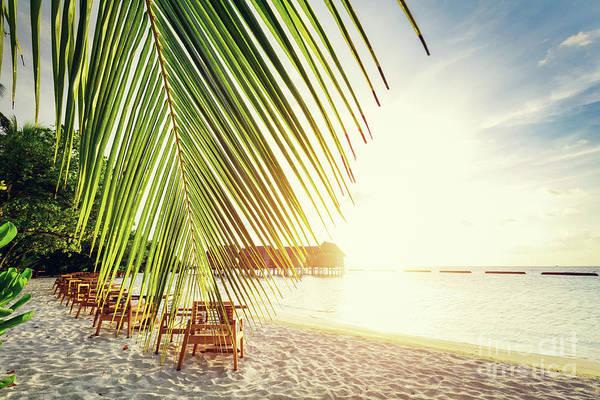 Wall Art - Photograph - Tropical Sandy Beach On Maldives. by Michal Bednarek