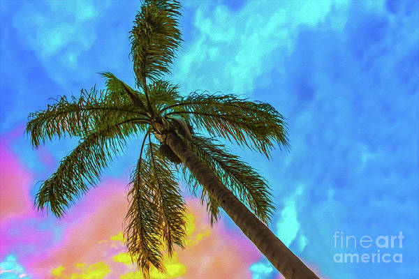 Digital Art - Tropical Scene - Palm Tree Against Sunset Sky by Susan Vineyard