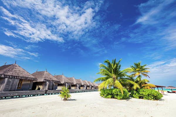 Photograph - Tropical Straw Cabins On The Tropical Beach. by Michal Bednarek