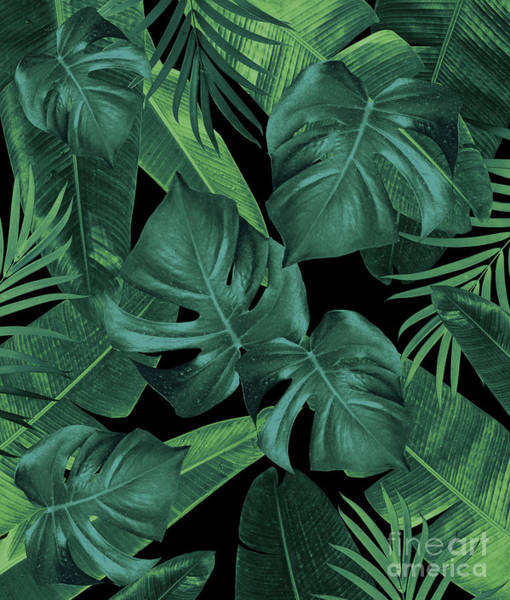 Banana Leaf Mixed Media - Tropical Summer Night Jungle Leaves Dream #1 #tropical #decor #art  by Anitas and Bellas Art