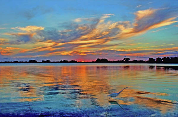 Wall Art - Photograph - Tropical Sunset by HH Photography of Florida
