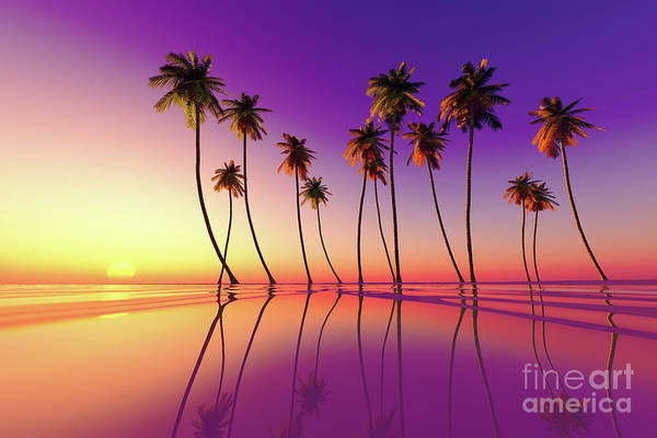 Wall Art - Photograph - Tropical Sunset Purple by Aleksey Tugolukov
