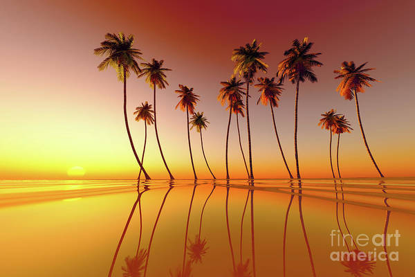 Wall Art - Photograph - Tropical Sunset Red by Aleksey Tugolukov