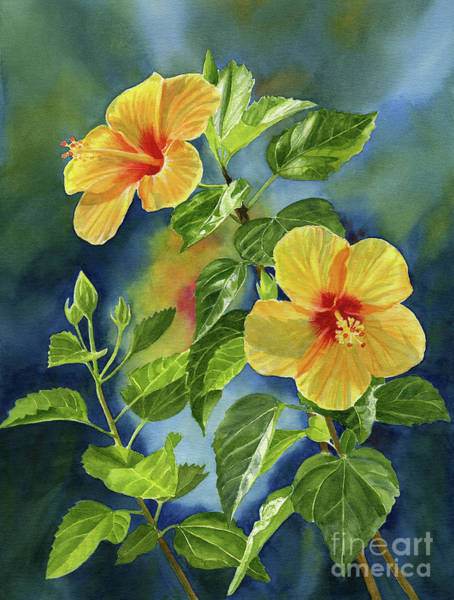 Hibiscus Painting - Tropical Yellow Orange Hibiscus With Background by Sharon Freeman