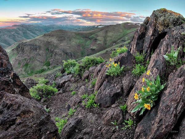 Photograph - Trout Creek Mountains by Leland D Howard