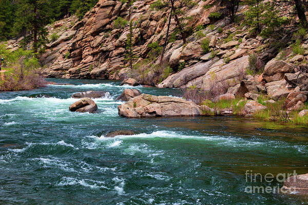 Photograph - Trout Pond In Eleven Mile Canyon by Steve Krull