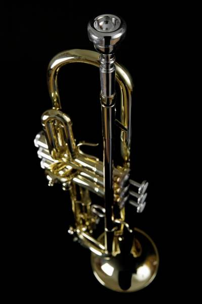 Wall Art - Photograph - Trumpet by Junior Gonzalez