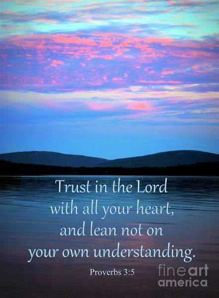 Photograph - Trust In The Lord by Patti Whitten