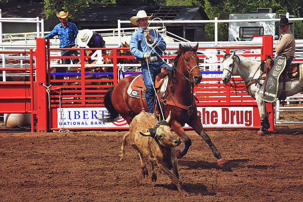 Prca Wall Art - Photograph - Trying To Rope In Those Points by Toni Hopper