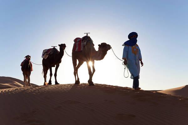 Indigenous People Wall Art - Photograph - Tuareg Man With Camel Train, Sahara by Peter Adams