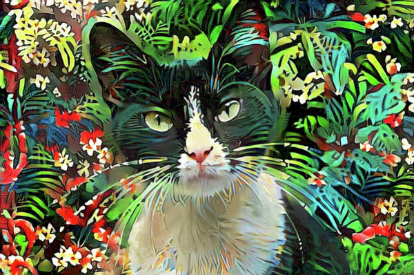 Digital Art - Tucker The Tuxedo Cat by Peggy Collins
