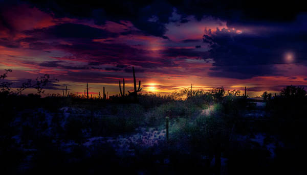 Wall Art - Photograph - Tucson - After The Monsoon by Micah Offman