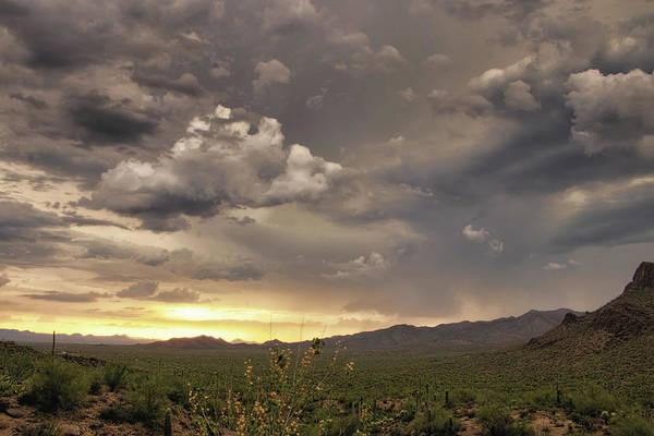 Photograph - Tucson Mountain Park Sunset by Elaine Malott