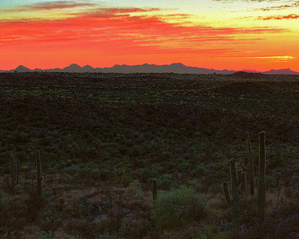 Photograph - Tucson Mountains At Twilight by Chance Kafka