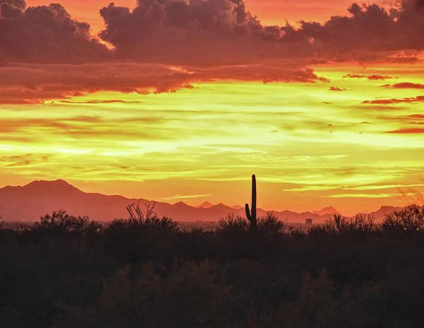 Photograph - Tucson Mountains Sunset, And Saguaro by Chance Kafka