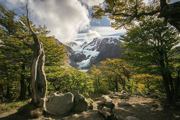 Patagonia Photograph - Tucueco by Ryan Weddle