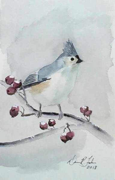 Titmouse Painting - Tufted Titmouse by Dennis Fakes