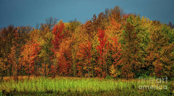 Photograph - Tug Hill Colors by Roger Monahan