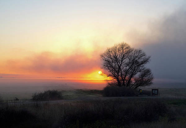 Photograph - Tule Fog Sunrise  by Cheryl Strahl