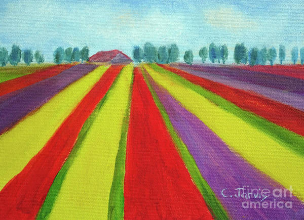 Painting - Tulip Fields Near Keukenhof by Carolyn Jarvis