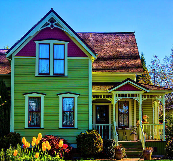 Photograph - Tulips And Victorian House by Garry Gay