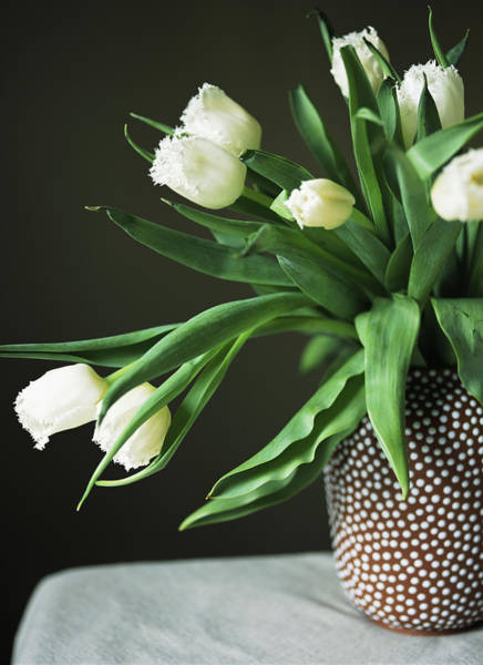 Home Interior Photograph - Tulips Falling From Spotted Vase by Armstrong Studios
