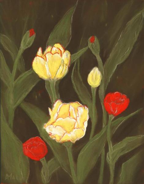 Painting - Tulips In My Garden by Anastasiya Malakhova