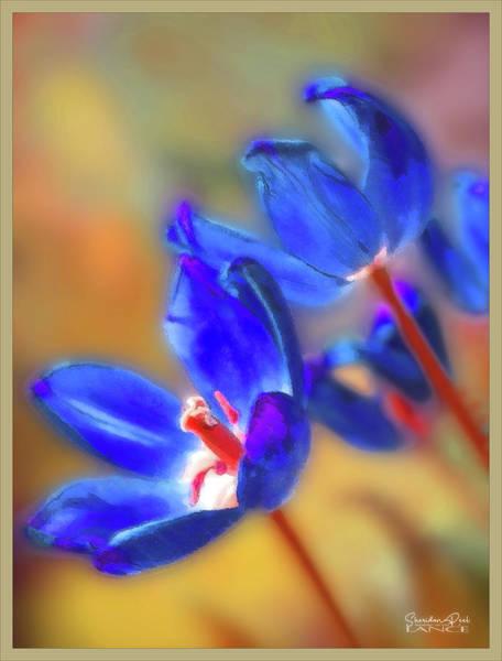 Digital Art - Tulips by Lance Sheridan-Peel