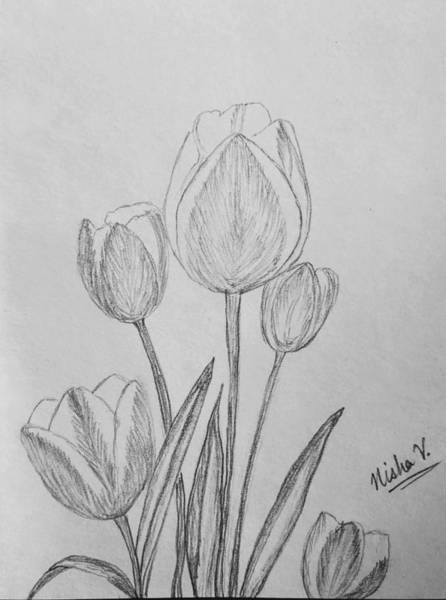 Grey Skies Drawing - Tulips by Nishma Creations