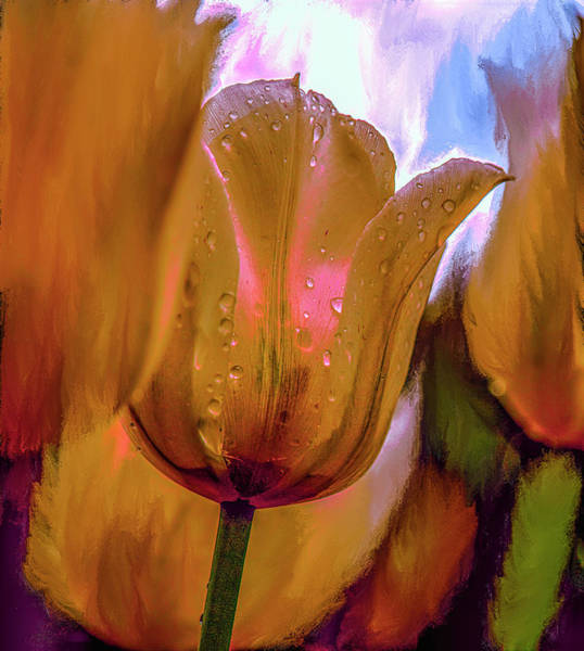 Mixed Media - Tulips Yellow #i7 by Leif Sohlman