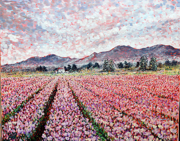 Skagit Valley Painting - Tullip Field. by Georges St Pierre