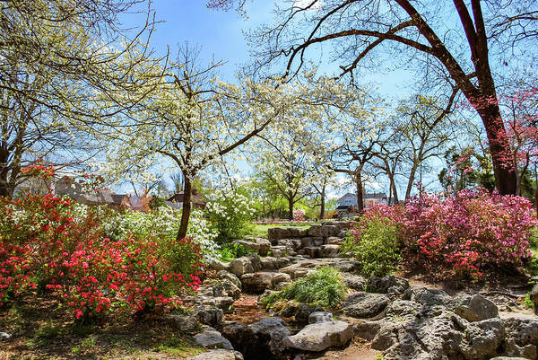 Photograph - Tulsa Woodward Park In Spring by Gregory Ballos