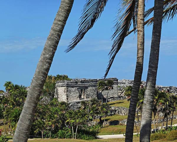Photograph - Tulum Ruins Tulum Mexico Through The Trees by Toby McGuire