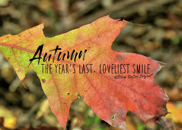 Photograph - Turn A Leaf Quote by JAMART Photography