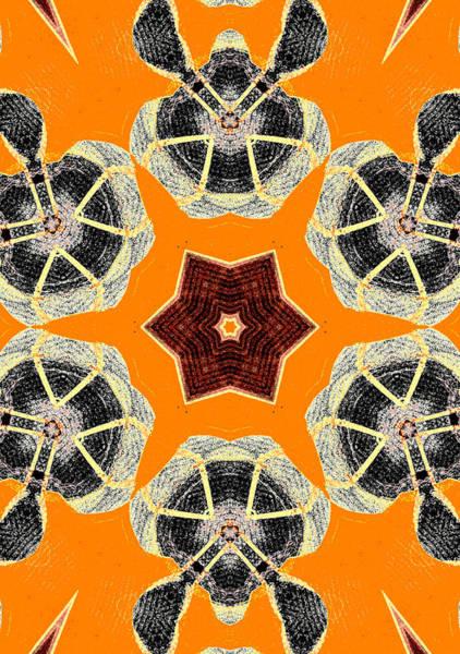 Digital Art - Turtle Abstract Pattern 2 by Artist Dot