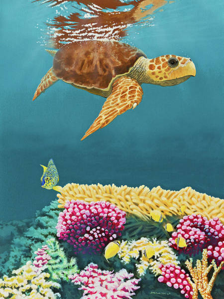 Wall Art - Painting - Loggerhead's Breath by James Melonic