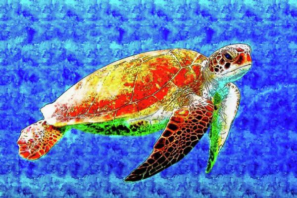 Painted Turtle Drawing - Turtle Swim Underwater by Hasan Ahmed