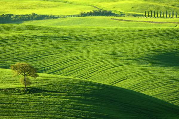 Wall Art - Photograph - Tuscany Landscape by Melki76