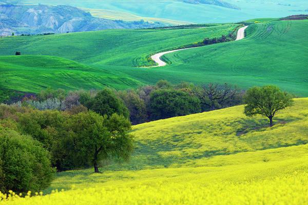 Wall Art - Photograph - Tuscany Landscape by Tadejzupancic