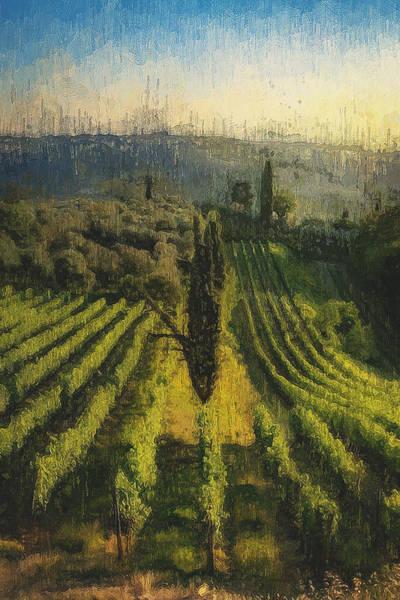 Painting - Tuscany Vineyards - 12 by Andrea Mazzocchetti