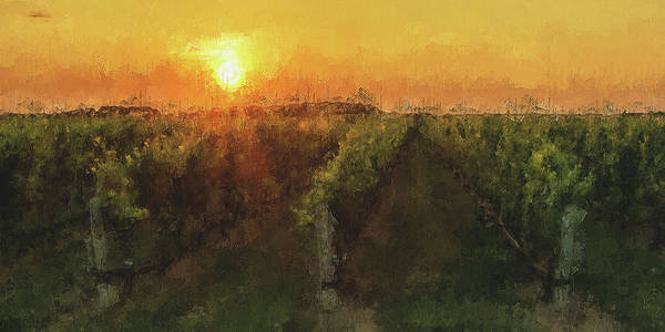 Painting - Tuscany Vineyards - 17 by Andrea Mazzocchetti