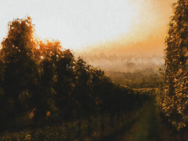 Painting - Tuscany Vineyards - 21  by Andrea Mazzocchetti