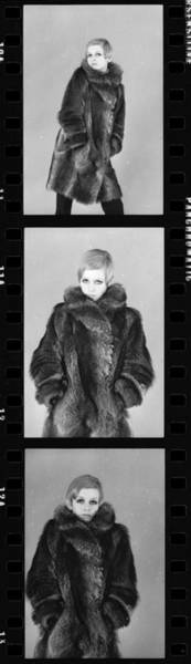 Photograph - Twiggy by Potter