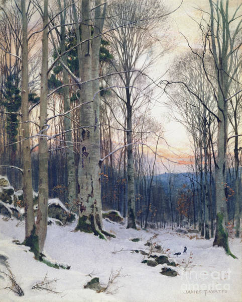 Wall Art - Painting - Twilight, Beech Woods by James Thomas Watts